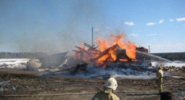 В деревне Анюша сгорел дом