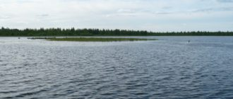 Любительское рыболовство на Синдорском озере