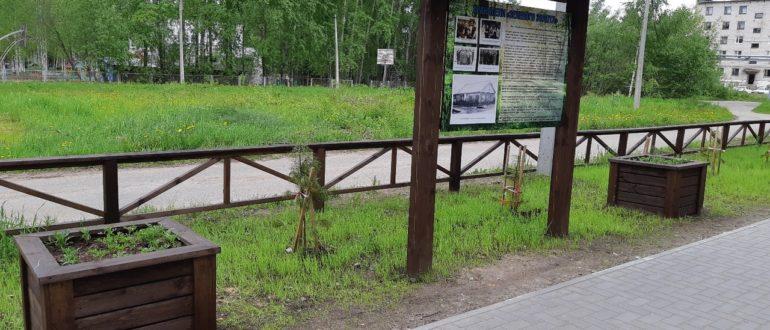 аллея лесоводов в Емве