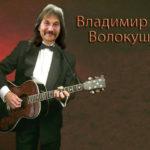 Владимир Волокушин