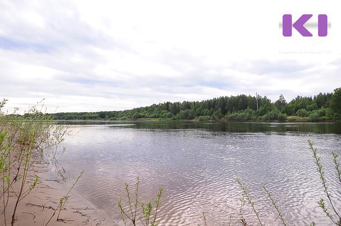 В реке Вымь почти не осталось европейского хариуса